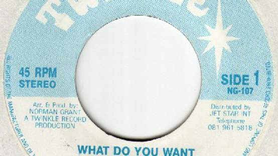 Twinkle Brothers–What Do You Want