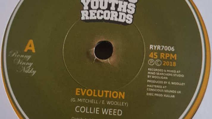 Evolution - Collie Weed
