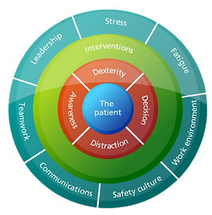 Human-factor-model.png