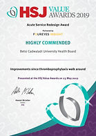 HSJ Value Awards 2019_HIGHLY COMMENDED__