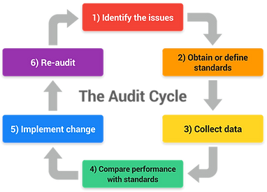 audit cycle.png