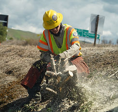ChainSaw_CalTrans_edited.jpg