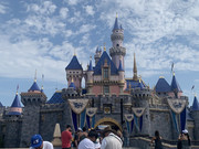 What is Disneyland REALLY Like Right Now?