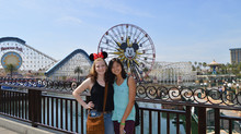 5 Types of People Who Should Visit Disney California Adventure