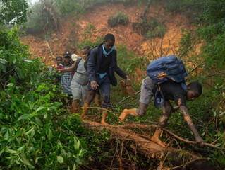 Comment: Cyclone Idai - mitigating the hand of nature