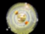Transparència_Logo_Conjunt__equina_rodon