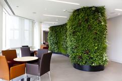 Vertical-Garden-project.jpg