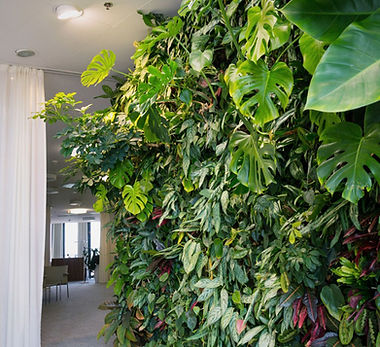 vertical-indoors.jpg