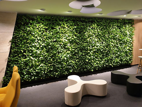 stargardens plants on hire landscaping bangalore.jpg