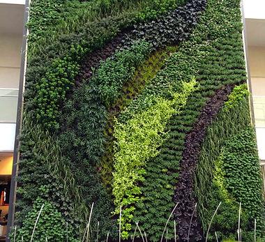 Vertical Garden Star Gardens.jpg