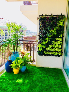 Star Gardens vertical garden (27).jpg
