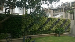 Star Gardens vertical garden (12).jpg