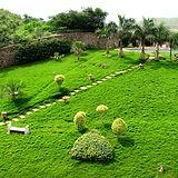 Star Gardens Landscape work.jpg