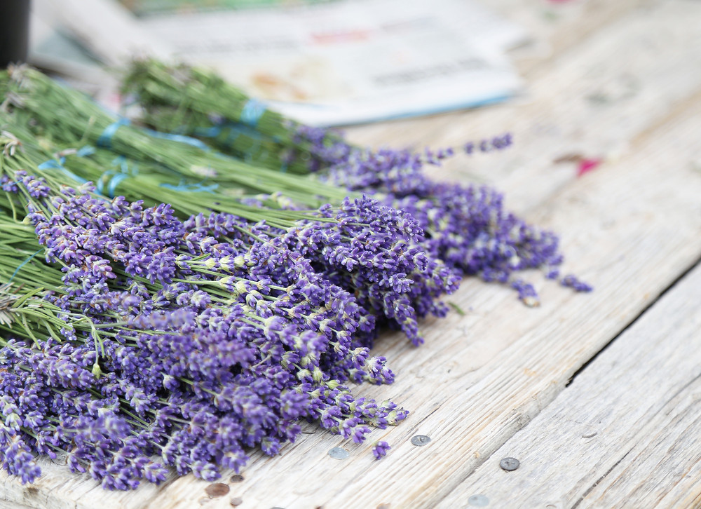 Lavender by the bunch