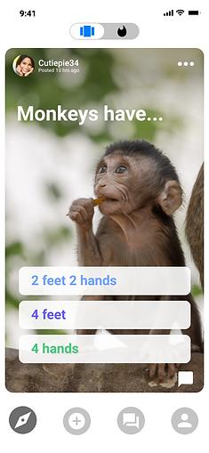 3 monkey.png
