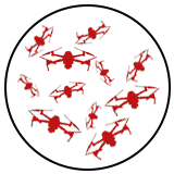 swarmbot scalability.png