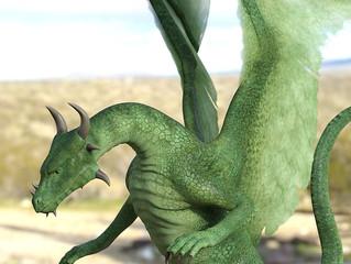 Meeting a White Royal Draco