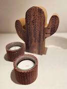 CactusPhotophores4.jpg