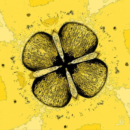 tableau-cellule-orbitale1_1-510x510.jpg