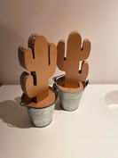 CactusPot1.jpg