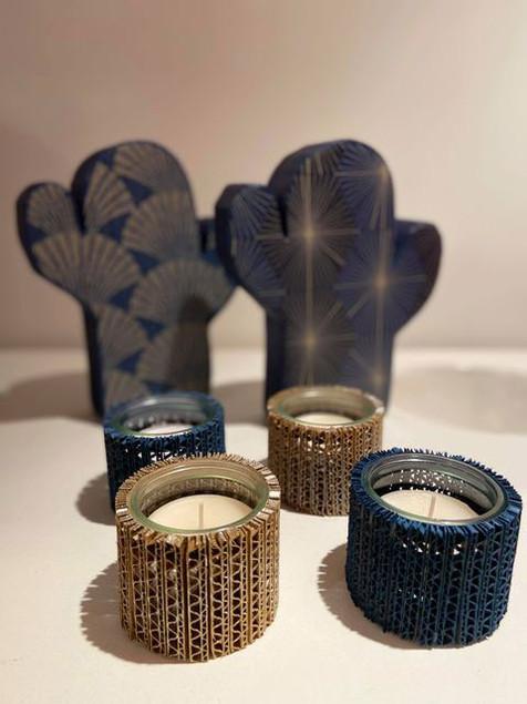 CactusPhotophores5.jpg