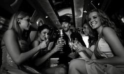 Petrecerea Burlacitelor