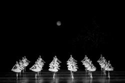 Balerine Nunta Valsul Mirilor Balet