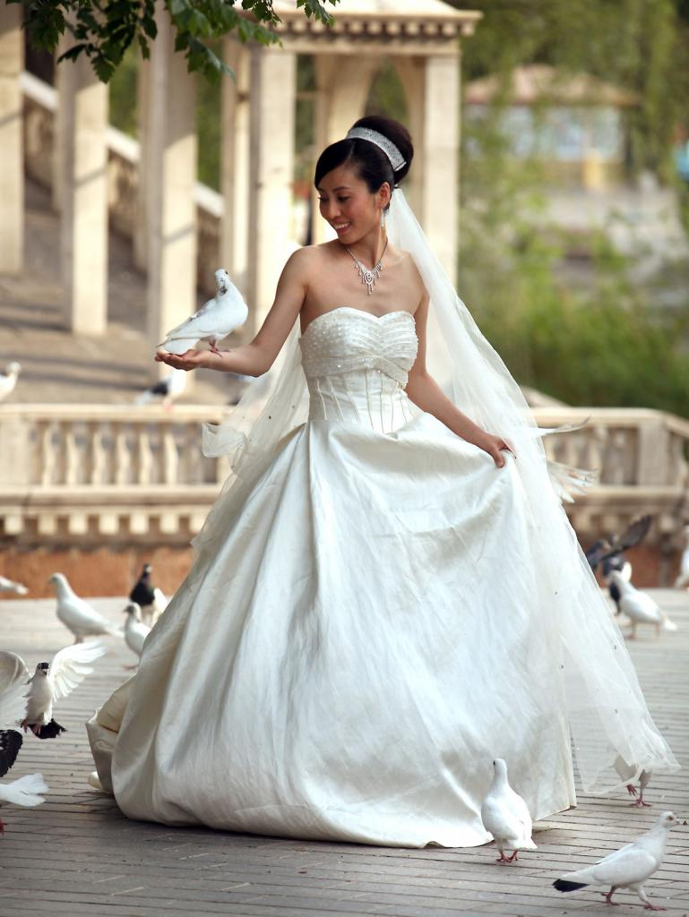 Inchiriere porumbei nunta