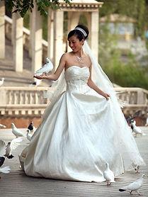 inchirere porumbei nunta, inchiriere porumbei albi nunta, inchiriere porumbei pitesti, inchiriere porumbei nunta pitesti, porumbei albi, porumbei albi voltati, porumbei nunti, nunta pitesti, organizare nunta pitesti, nunti pitesti, porumbei voltati, porumbei albi, porumbei nunta, porumbei biserica, inchiriat porumbei nunta, inchiriez porumbei nunta, porumbei pitesti, porumbei mioveni, porumbei curtea de arges, porumbei campulung, porumbei arges, inchiriez porumbei nunta pitesti, porumbei albi nunta pitesti, porumbei voltati nunta, porumbei pitesti
