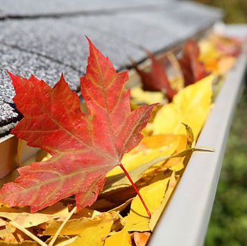 fall_gutter.jpg