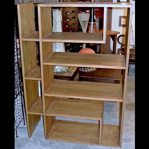 Eccentric Book Shelf