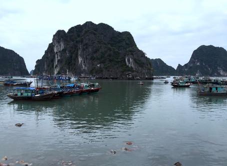 Vietnam 🇻🇳