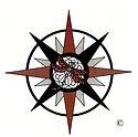 Dragon fly Logo.jpg