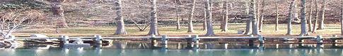 Bridge image.jpg