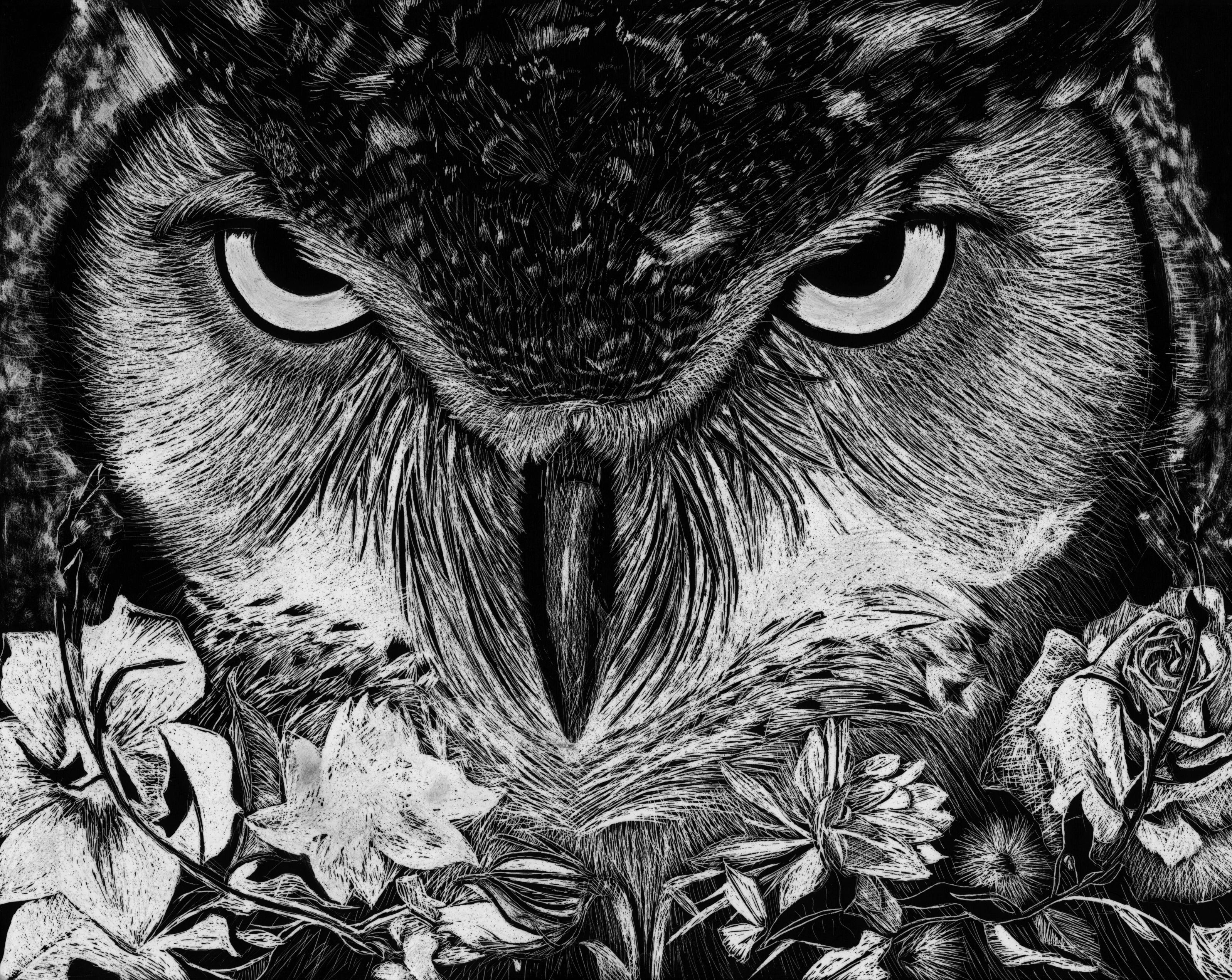 NIght Owl, 2012