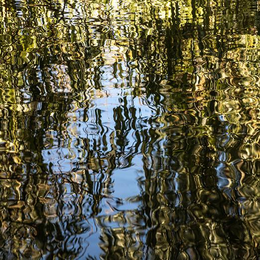 Reflection_1_Quadrat_72dpi.jpg