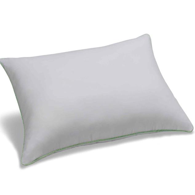 Nanolive Pillow