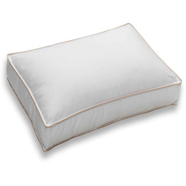 Smarty Pillow