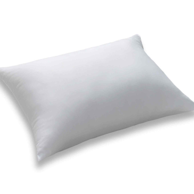 Aloevera Nano Pillow