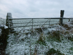 Snowy gate in Porthcurno Valley