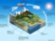 WaterCycleFigure_web.jpg