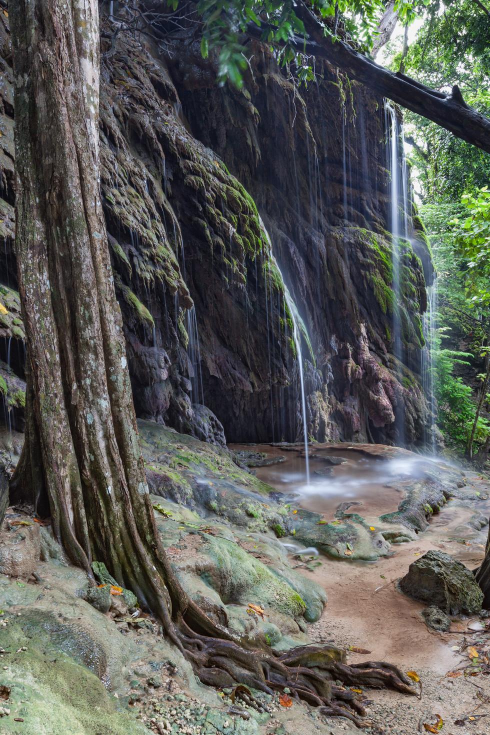 Hug's Dale Waterfall