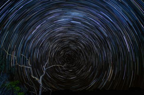 Star Trail Magic