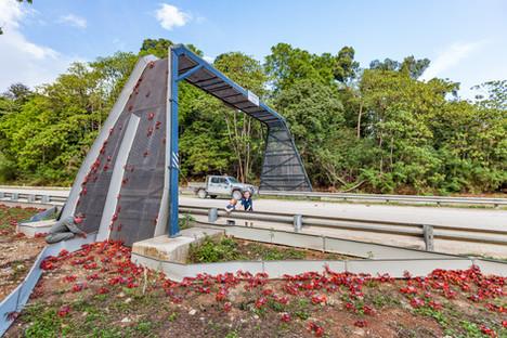 Red Crab Bridge with Park Rangers & Children