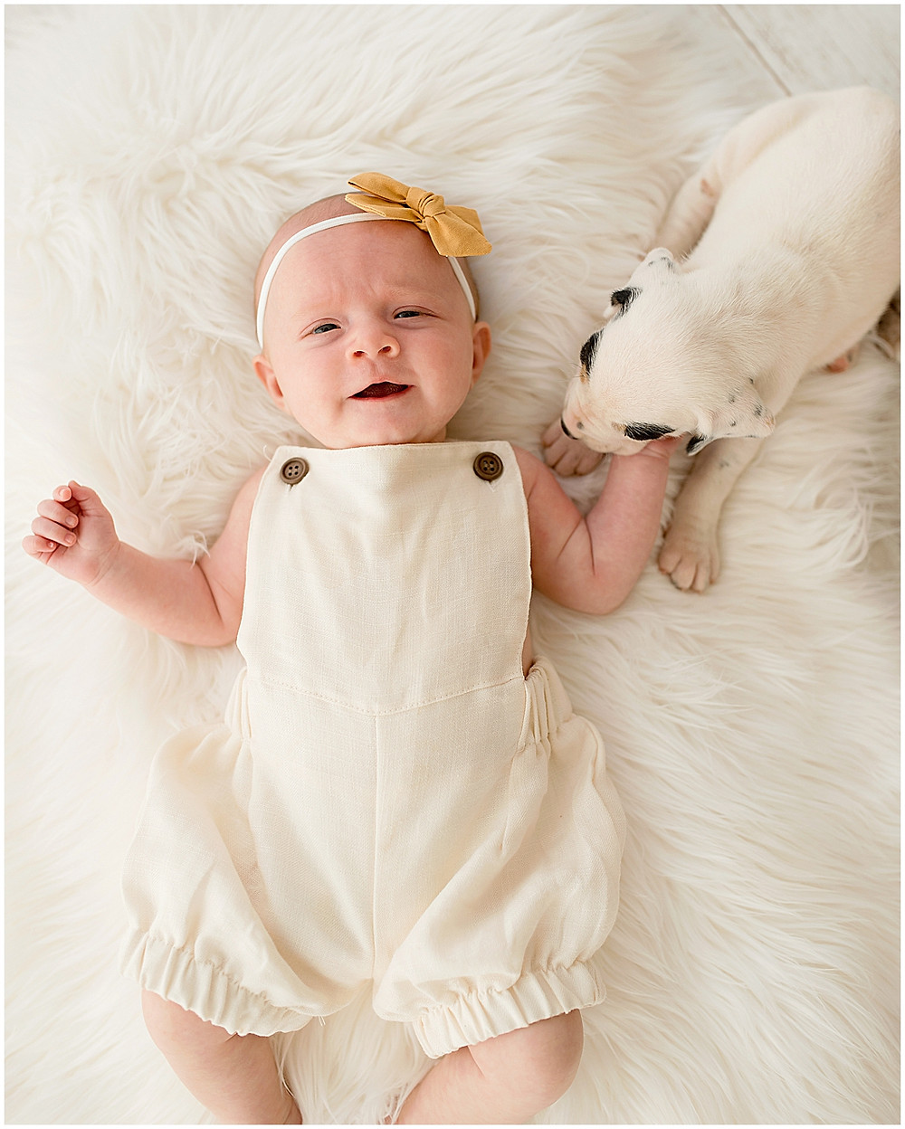 Baby Girl, Puppies, 3 months, Milestone, Natural Light Studio, Southern Utah
