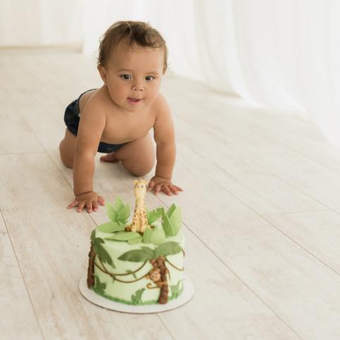 19Draeson-Cake-Smash-One-year-Cedar-City