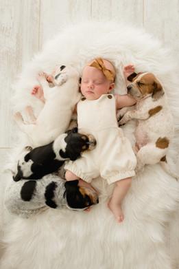 26AC-Photography-Puppy-Baby-Studio-Cedar