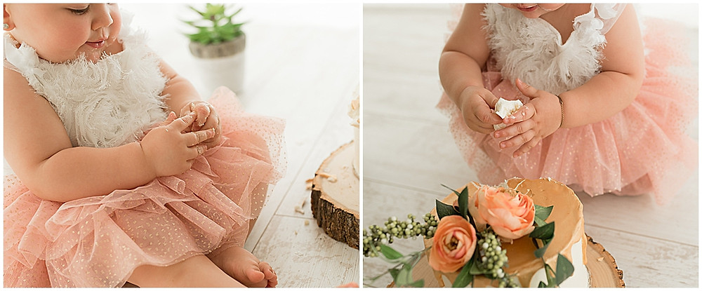Cake Smash Inspiration, One Year Milestone, Baby Girl, Natural Light Studio, Cedar City, Utah