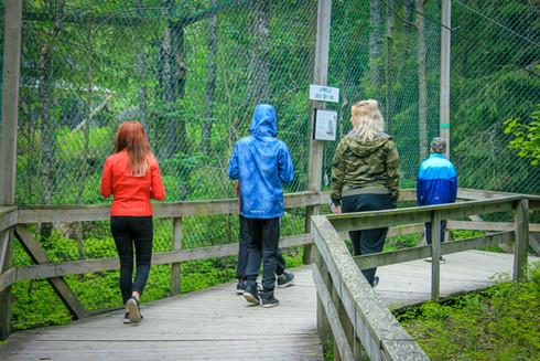 Eläinpuistossa.jpg