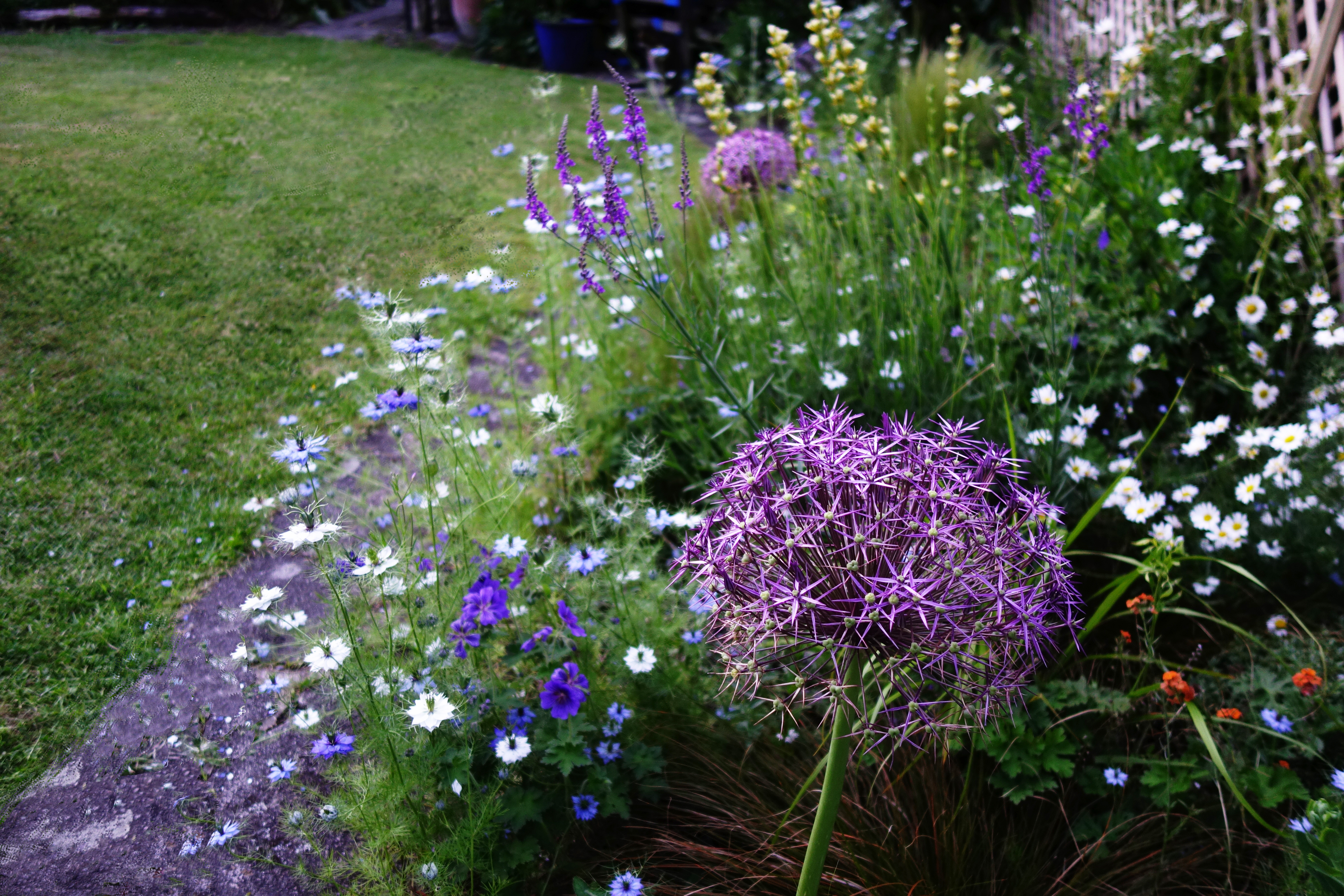 Gardener Mentoring Service
